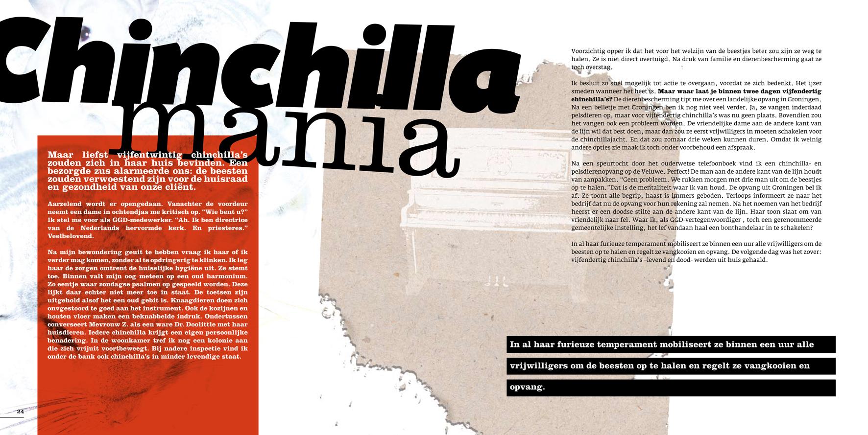 chinchilla mania